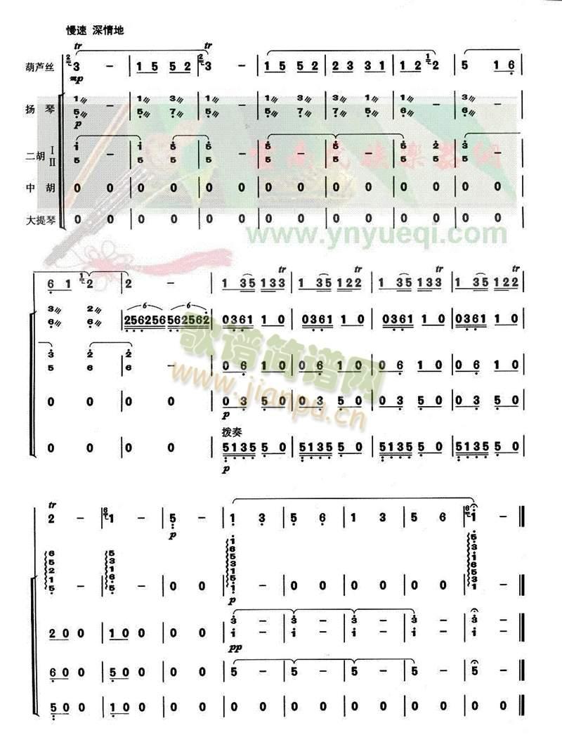 美丽的边疆6-11(葫芦丝谱)6